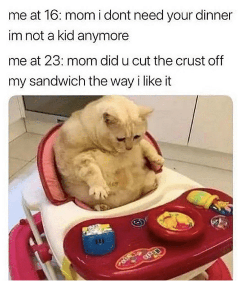 Mom, Sandwich, and Did: me at 16: mom i dont need your dinner  im not a kid anymore  me at 23: mom did u cut the crust off  my sandwich the way i like it