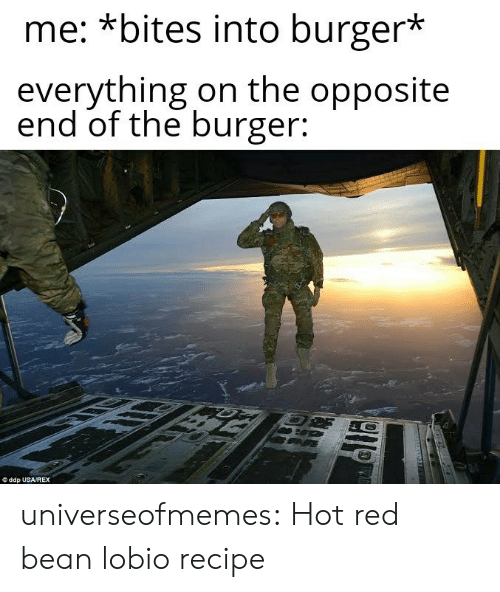 Tumblr, Blog, and Usa: me: *bites into burger*  everything on the opposite  end of the burger:  ddp USA/REX universeofmemes: Hot red bean lobiorecipe