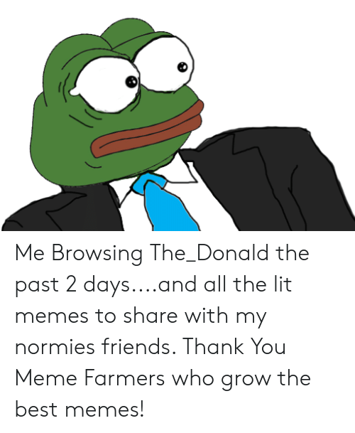 Thank You Meme: Me Browsing The_Donald the past 2 days....and all the lit memes to share with my normies friends. Thank You Meme Farmers who grow the best memes!