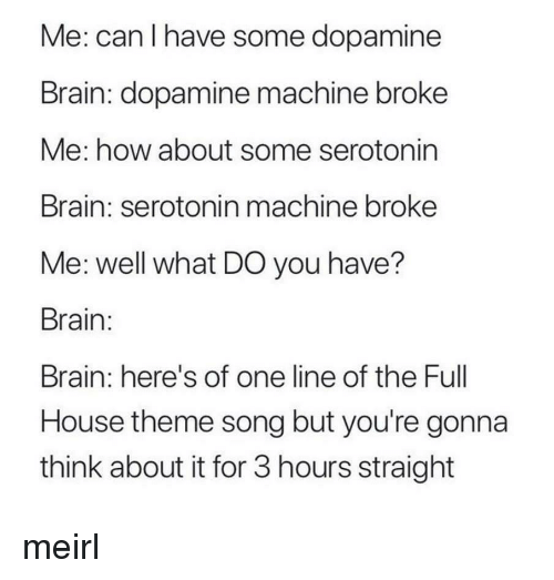 Full House: Me: can I have some dopamine  Brain: dopamine machine broke  Me: how about some serotonin  Brain: serotonin machine broke  Me: well what DO you have?  Brain:  Brain: here's of one line of the Full  House theme song but you're gonna  think about it for 3 hours straight meirl