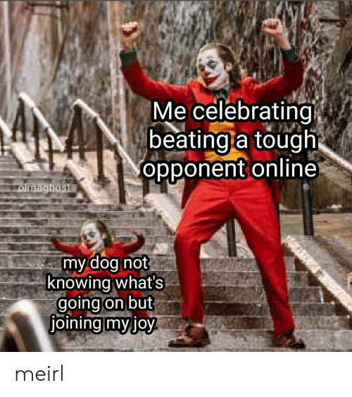 Tough, MeIRL, and Dog: Me celebrating  beating a tough  opponent online  oimaghost  my dog not  knowing what's  going on but  joining myjoy meirl