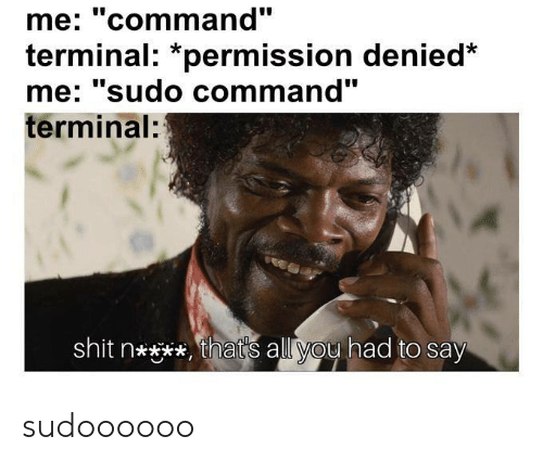 "Shit, Terminal, and All: me: ""command""  terminal: *permission denied  me' sudo command  terminal:  shit n****, that's all you had to say sudoooooo"