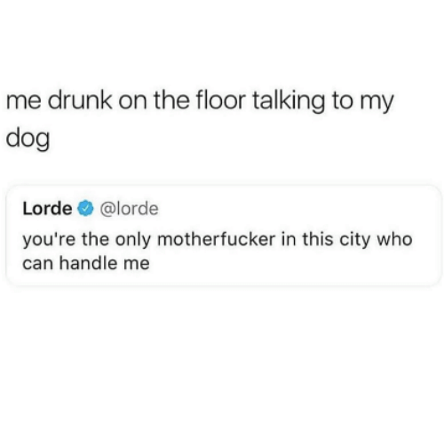 Drunk, Lorde, and Dog: me drunk on the floor talking to my  dog  Lorde @lorde  you're the only motherfucker in this city who  can handle me