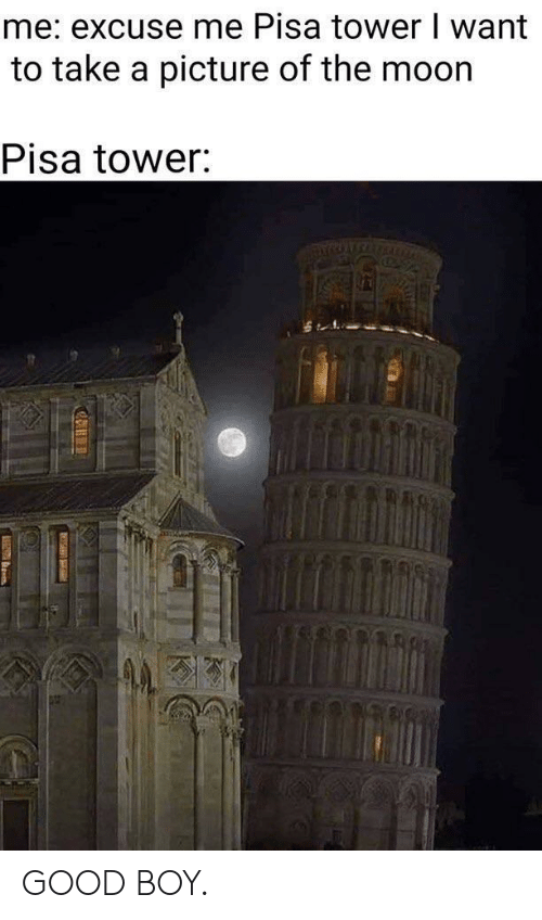 pisa: me: excuse me Pisa tower I want  to take a picture of the moor  Pisa tower GOOD BOY.