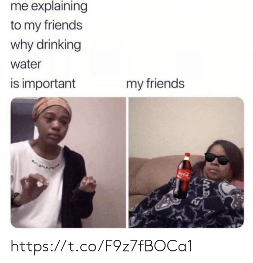 Drinking, Friends, and Memes: me explaining  to my friends  why drinking  water  is important  my friends  oca-Cl  IMB https://t.co/F9z7fBOCa1