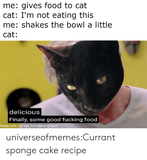 Food, Fucking, and Tumblr: me: gives food to cat  cat: I'm not eating this  me: shakes the bowl a little  cat:   delicious  Finally, some good fucking food  Made with my cat, his name is Zeus universeofmemes:Currant sponge cake recipe
