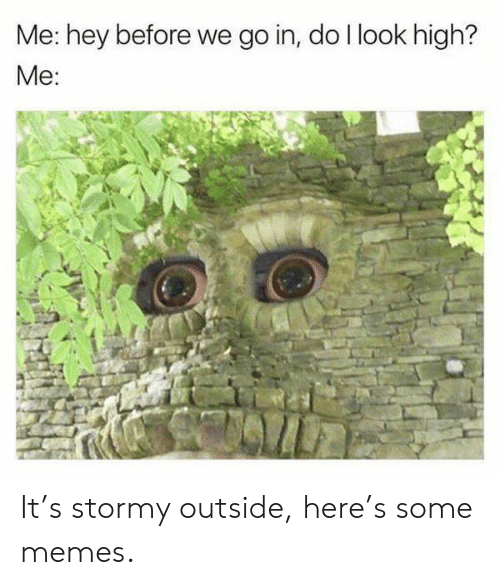 Memes, High, and Hey: Me: hey before we go in, do llook high?  Me: It's stormy outside, here's some memes.