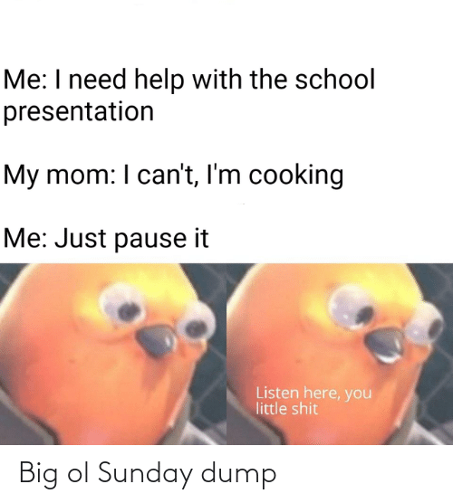 School, Shit, and Help: Me: I need help with the school  presentation  My mom: I can't, I'm cooking  Me: Just pause it  Listen here, you  little shit Big ol Sunday dump
