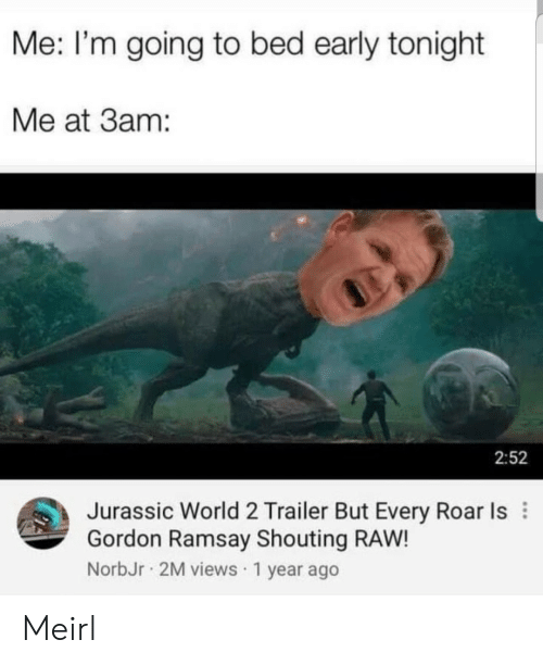 Going To Bed: Me: I'm going to bed early tonight  Me at 3am:  2:52  Jurassic World 2 Trailer But Every Roar Is  Gordon Ramsay Shouting RAW!  NorbJr 2M views 1 year ago Meirl