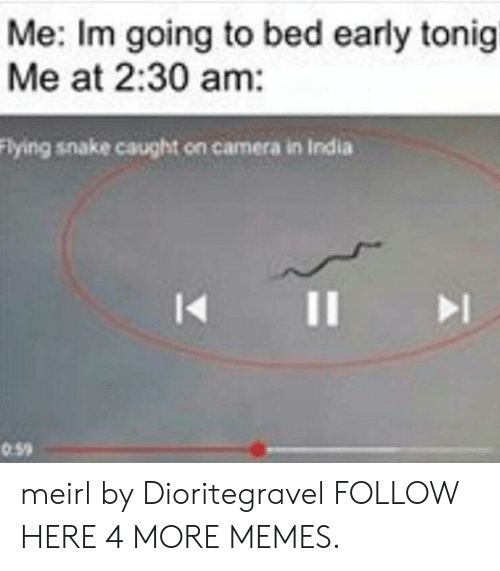 Dank, Memes, and Target: Me: Im going to bed early tonigi  Me at 2:30 am:  Flying snake caught on camera in India  I1  0.59 meirl by Dioritegravel FOLLOW HERE 4 MORE MEMES.