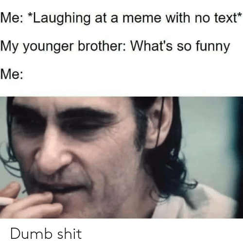 """Dumb, Funny, and Meme: Me: """"Laughing at a meme with no text  My younger brother: What's so funny  Me: Dumb shit"""