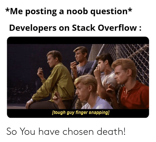 Death, Tough, and Stack: *Me posting a noob question*  Developers on Stack Overflow  [tough guy finger snapping] So You have chosen death!