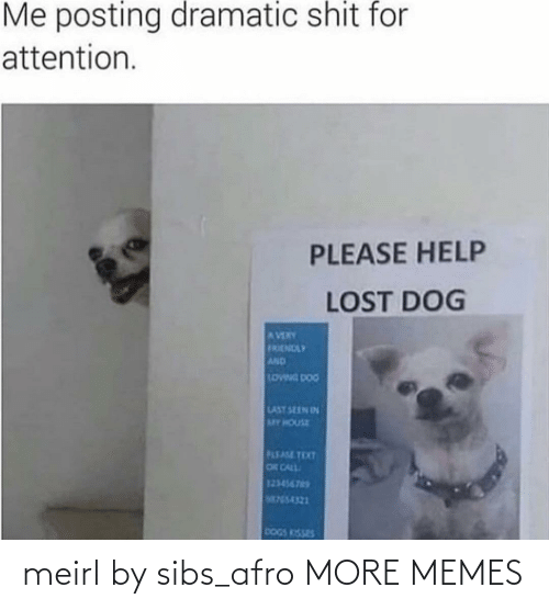 House: Me posting dramatic shit for  attention.  PLEASE HELP  LOST DOG  AVERY  FRENDLY  AND  LOWNG DOG  LAST SEEN IN  MY HOUSE  PLEASE TEXT  OR CALL  123456765  M755-4321  DOGS KISSES meirl by sibs_afro MORE MEMES