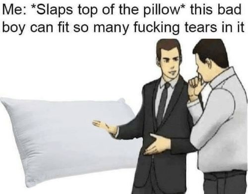 This Bad Boy: Me: *Slaps top of the pillow* this bad  boy can fit so many fucking tears in it