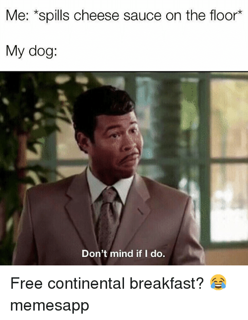 Memes, Breakfast, and Free: Me: *spills cheese sauce on the floor*  My dog:  Don't mind if I do. Free continental breakfast? 😂 memesapp