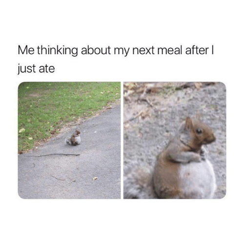 Funny, Tumblr, and Next: Me thinking about my next meal after I  just ate