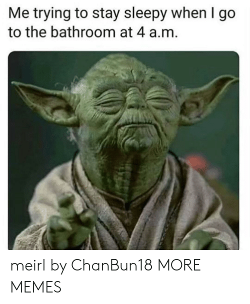 Dank, Memes, and Target: Me trying to stay sleepy when I go  to the bathroom at 4 a.m. meirl by ChanBun18 MORE MEMES