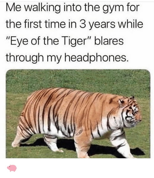 "Gym, Eye of the Tiger, and Headphones: Me walking into the gym for  the first time in 3 years while  ""Eye of the Tiger"" blares  through my headphones 🐖"