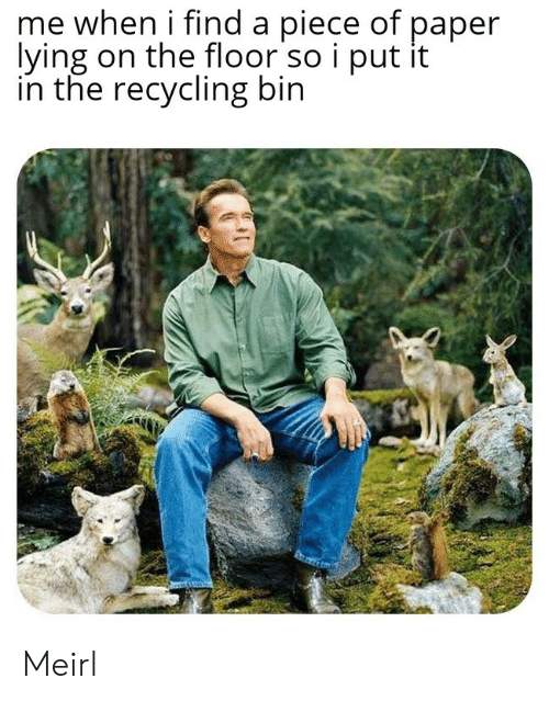 Lying, MeIRL, and Paper: me when i find a piece of paper  lying on the floor so i put it  in the recycling bin Meirl