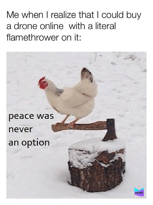 literal: Me when I realize that I could buy  a drone online with a literal  flamethrower on it:  peace was  never  an option  MEMES