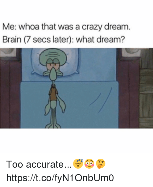 Crazy, Brain, and Dream: Me: whoa that was a crazy dream.  Brain (7 secs later): what dream? Too accurate...😴😳🤔 https://t.co/fyN1OnbUm0