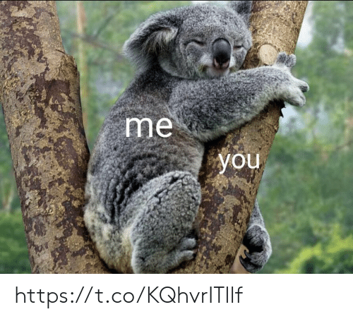 Memes, 🤖, and You: me  you https://t.co/KQhvrITllf