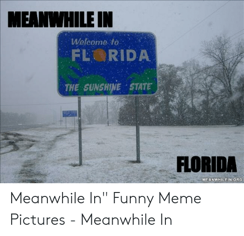 "Funny, Meme, and Florida: MEANIHILE IN  Welcome to  THE SUNSHINE STATE  FLORIDA  MEANWHILEIN ORG Meanwhile In"" Funny Meme Pictures - Meanwhile In"