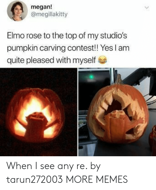 Megan: megan!  @megillakitty  Elmo rose to the top of my studio's  pumpkin carving contest! Yes I am  quite pleased with myself When I see any re. by tarun272003 MORE MEMES