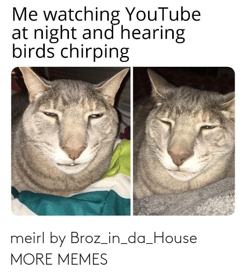 House: meirl by Broz_in_da_House MORE MEMES