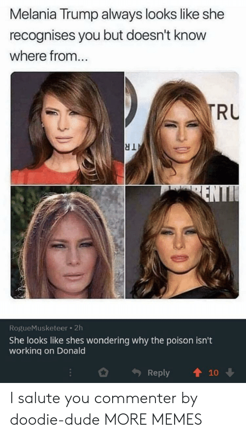 Dank, Dude, and Melania Trump: Melania Trump always looks like she  recognises you but doesn't know  where from...  TRU  TR  ENTI  RogueMusketeer 2h  She looks like shes wondering why the poison isn't  working on Donald  Reply  10 I salute you commenter by doodie-dude MORE MEMES