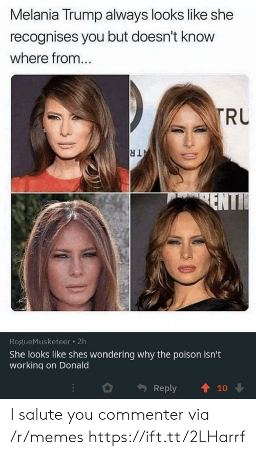 Melania Trump, Memes, and Trump: Melania Trump always looks like she  recognises you but doesn't know  where from...  TRU  TR  ENTI  RogueMusketeer 2h  She looks like shes wondering why the poison isn't  working on Donald  Reply  10 I salute you commenter via /r/memes https://ift.tt/2LHarrf
