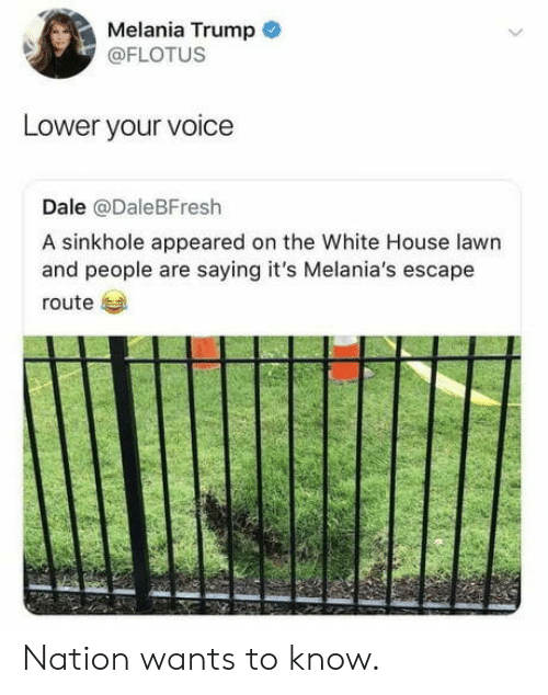White House: Melania Trump  @FLOTUS  Lower your voice  Dale @DaleBFresh  A sinkhole appeared on the White House lawn  and people are saying it's Melania's escape  route Nation wants to know.