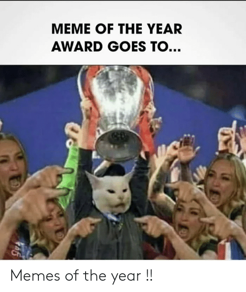 Meme Of: MEME OF THE YEAR  AWARD GOES TO...  Ch Memes of the year !!
