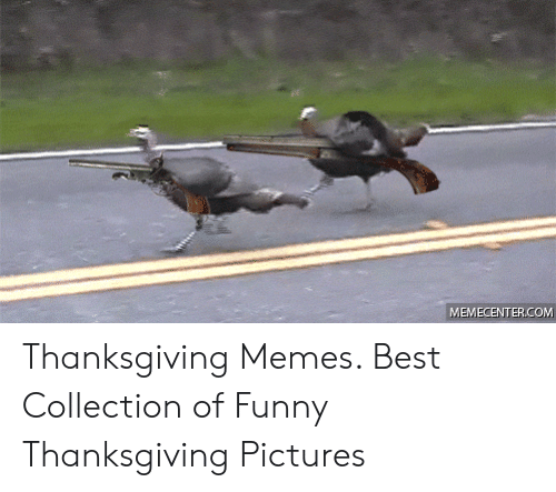 Funny, Memes, and Thanksgiving: MEMECENTER.COM Thanksgiving Memes. Best Collection of Funny Thanksgiving Pictures