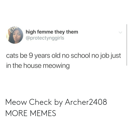 meow: Meow Check by Archer2408 MORE MEMES