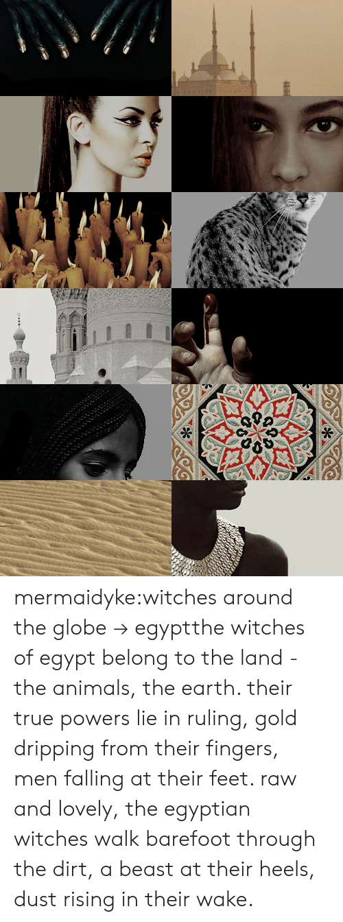 Animals, True, and Tumblr: mermaidyke:witches around the globe→ egyptthe witches of egypt belong to the land - the animals, the earth. their true powers lie in ruling, gold dripping from their fingers, men falling at their feet. raw and lovely, the egyptian witches walk barefoot through the dirt, a beast at their heels, dust rising in their wake.