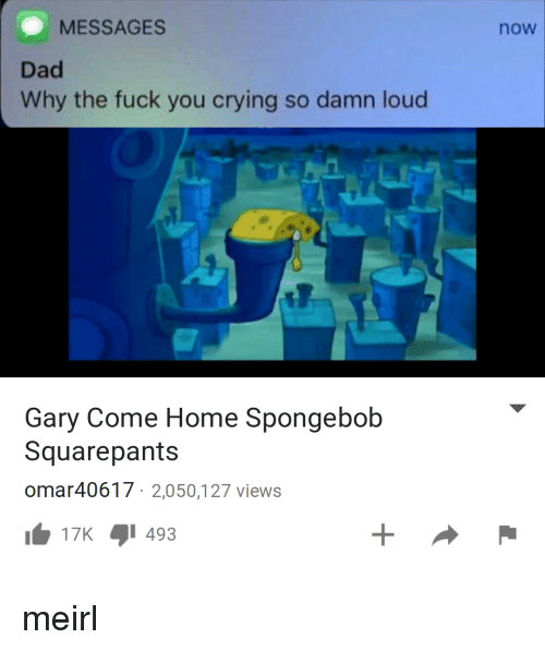 Crying, Dad, and Fuck You: MESSAGES  now  Dad  Why the fuck you crying so damn loud  Gary Come Home Spongebob  Squarepants  omar40617 2,050,127 views  b 17K 1493 meirl