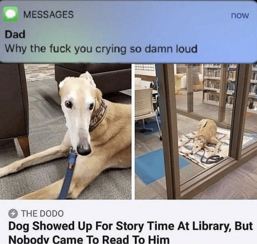 Crying, Dad, and Fuck You: MESSAGES  now  Dad  Why the fuck you crying so damn loud  THE DODO  Dog Showed Up For Story Time At Library, But  Nobodv Came To Read To Him