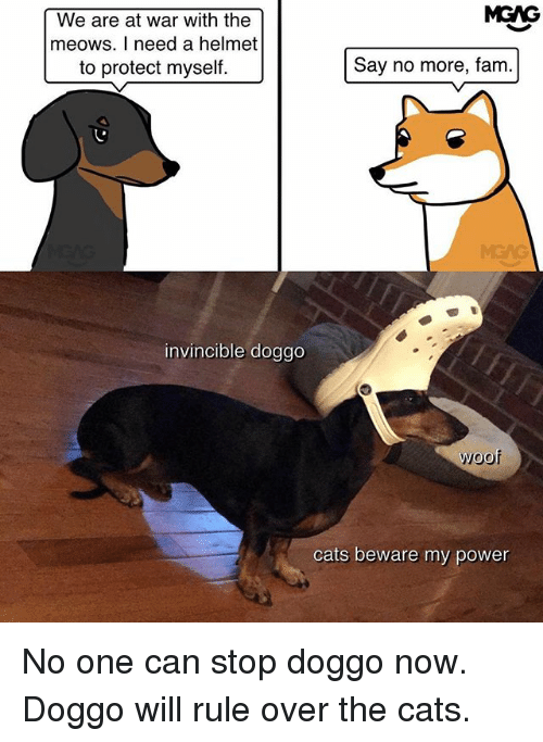 woofing: MGAG  We are at war with the  meows. I need a helmet  to protect myself.  Say no more, fam.  MEAG  invincible doggo  woof  cats beware my power No one can stop doggo now. Doggo will rule over the cats.