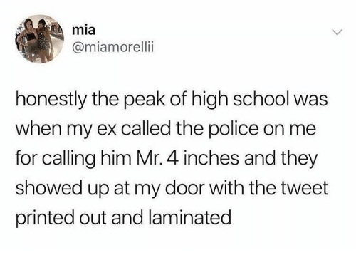 Humans of Tumblr: mia  @miamorelli  honestly the peak of high school was  when my ex called the police on me  for calling him Mr. 4 inches and they  showed up at my door with the tweet  printed out and laminated