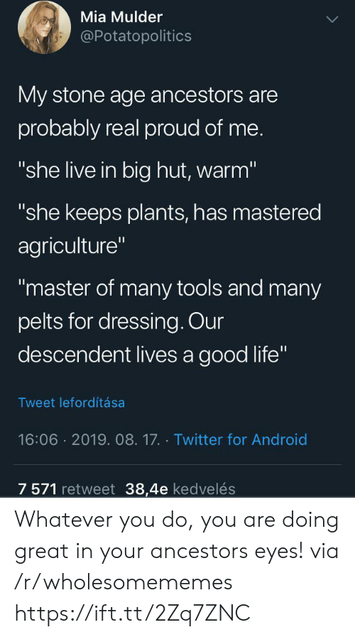 """Android, Life, and Twitter: Mia Mulder  @Potatopolitics  My stone age ancestors are  probably real proud of me.  """"she live in big hut, warm""""  """"she keeps plants, has mastered  agriculture""""  """"master of many tools and many  pelts for dressing. Our  descendent lives a good life""""  Tweet lefordítása  16:06 2019. 08.17. Twitter for Android  7 571 retweet 38,4e kedvelés Whatever you do, you are doing great in your ancestors eyes! via /r/wholesomememes https://ift.tt/2Zq7ZNC"""