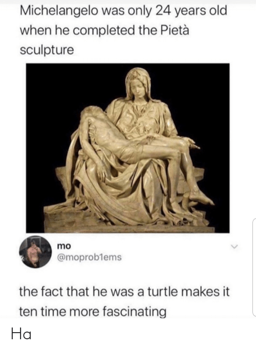 The Fact That: Michelangelo was only 24 years old  when he completed the Pietà  sculpture  mo  @moproblems  the fact that he was a turtle makes it  ten time more fascinating Ha