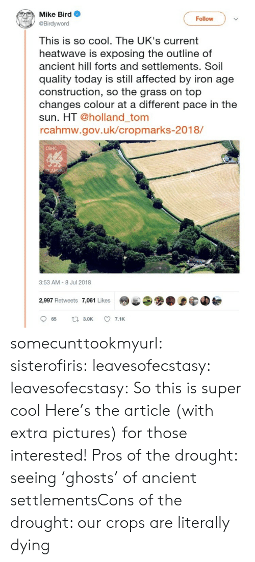 Uks: Mike Bird  Birdyword  This is so cool. The UK's current  heatwave is exposing the outline of  ancient hill forts and settlements. Soil  quality today is still affected by iron age  construction, so the grass on top  changes colour at a different pace in the  sun. HT @holland_tom  rcahmw.gov.uk/cropmarks-2018/  Follow  CBHC  3:53 AM-8 Jul 2018  2,997 Retweets 7,061 Likes9 somecunttookmyurl: sisterofiris:  leavesofecstasy:  leavesofecstasy:  So this is super cool   Here's the article (with extra pictures) for those interested!  Pros of the drought: seeing 'ghosts' of ancient settlementsCons of the drought: our crops are literally dying