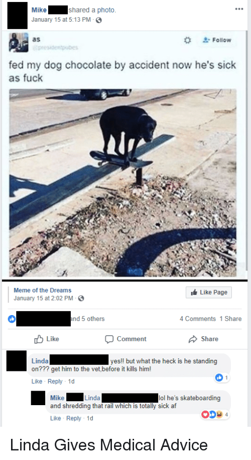 Advice, Af, and Facepalm: Mike  January 15 at 5:13 PM S  shared a photo  as  Follow  fed my dog chocolate by accident now he's sick  as fuck  LA  Meme of the Dreams  Like Page  January 15 at 2:02 PM  4 Comments 1 Share  Like  Comment  Linda  on??? get him to the vet,before it kills him!  Like Reply 1d  yes!! but what the heck is he standing  Mike  and shredding that rail which is totally sick af  Like Reply 1d  Linda  lol he's skateboarding  00+4