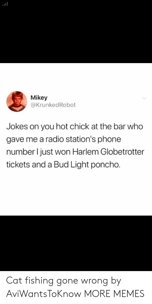 Dank, Memes, and Phone: Mikey  @KrunkedRobot  you hot chick at the bar who  gave me a radio station's phone  number I just won Harlem Globetrotter  tickets and a Bud Light poncho. Cat fishing gone wrong by AviWantsToKnow MORE MEMES