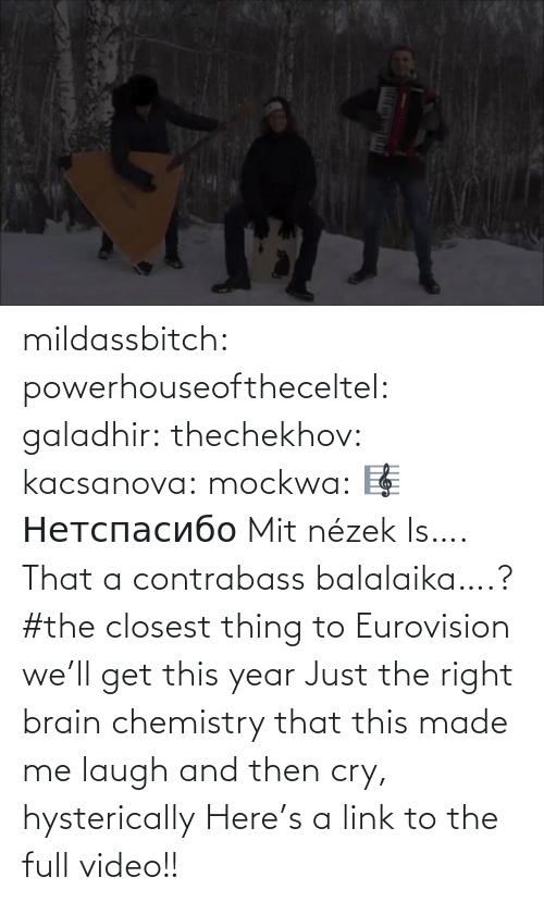 type: mildassbitch: powerhouseoftheceltel:  galadhir:  thechekhov:  kacsanova:  mockwa:    🎼  Нетспасибо  Mit nézek    Is…. That a contrabass balalaika….?    #the closest thing to Eurovision we'll get this year    Just the right brain chemistry that this made me laugh and then cry, hysterically    Here's a link to the full video!!