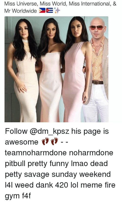 Awesomes: Miss Universe, Miss World, Miss International, &  Mr Worldwide DE Follow @dm_kpsz his page is awesome 👣👣 - - teamnoharmdone noharmdone pitbull pretty funny lmao dead petty savage sunday weekend l4l weed dank 420 lol meme fire gym f4f