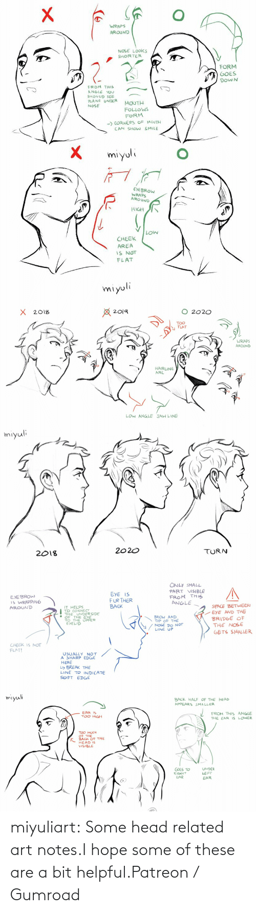 notes: miyuliart: Some head related art notes.I hope some of these are a bit helpful.Patreon / Gumroad