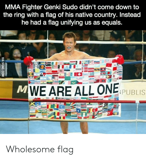 MMA: MMA Fighter Genki Sudo didn't come down to  the ring with a flag of his native country. Instead  he had a flag unifying us as equals.  MWE ARE ALL ONE  PUBLIS  VIA 9GAG.COM Wholesome flag