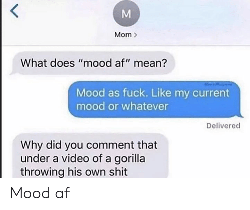 "Dank Memes: Mom  What does ""mood af"" mean?  Mood as fuck. Like my current  mood or whatever  Delivered  Why did you comment that  under a video of a gorilla  throwing his own shit Mood af"